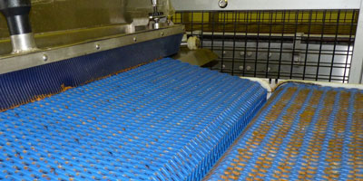 pharmaceutical plants use steam pressure cleaners to sanitize conveyor belts